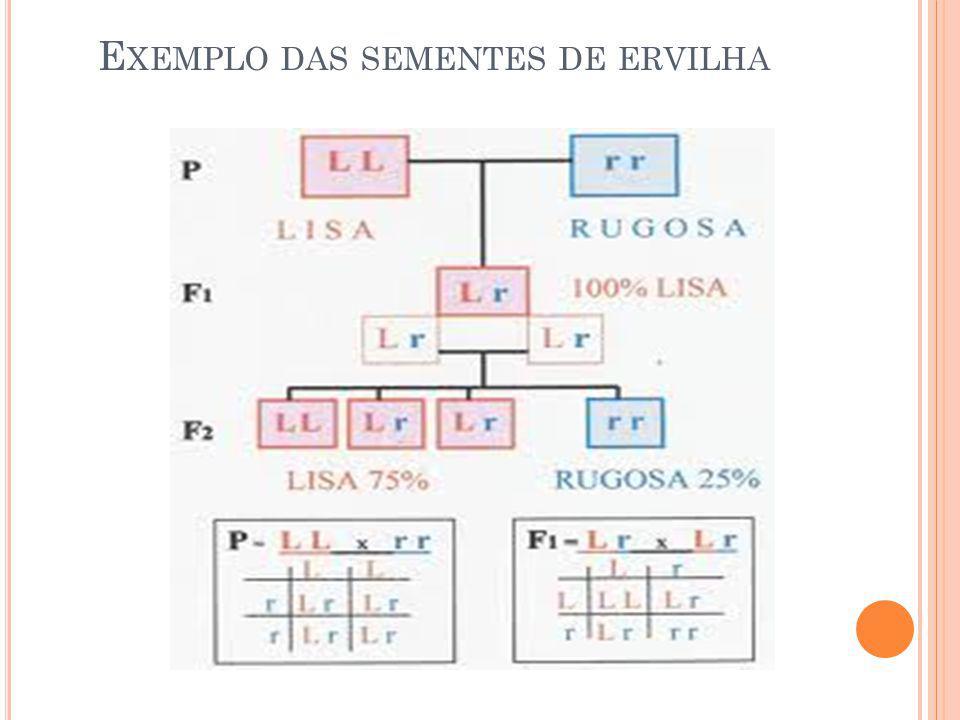CODOMINÂNCIA Nem todas as características hereditárias apresentam genes dominantes e recessivos.
