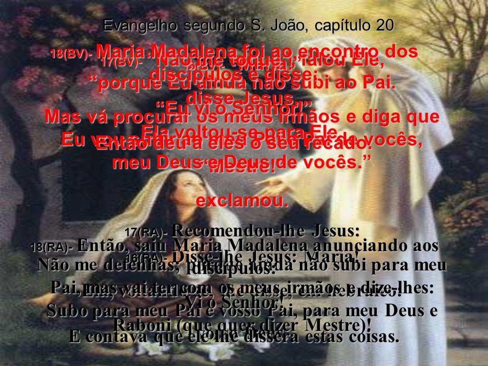 Evangelho segundo S.João, capítulo 20 14(BV)- Ela olhou por cima do ombro e viu alguém atrás dela.