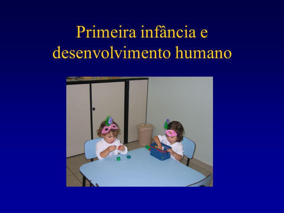 Primeira infância e desenvolvimento humano