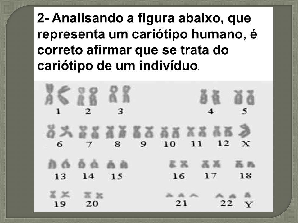 2- Analisando a figura abaixo, que representa um cariótipo humano, é correto afirmar que se trata do cariótipo de um indivíduo :