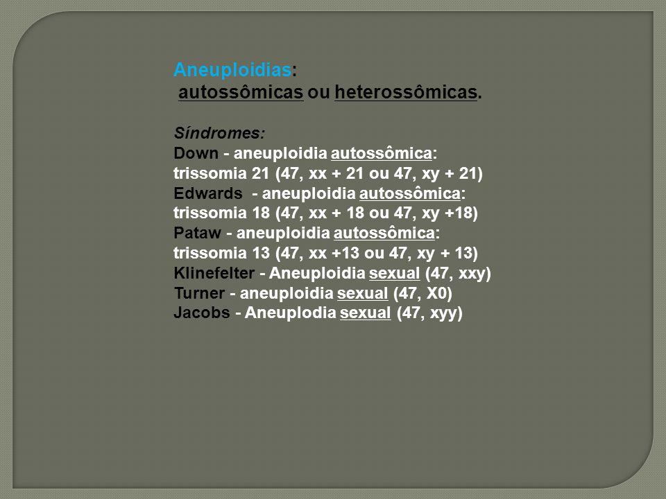 Aneuploidias: autossômicas ou heterossômicas. Síndromes: Down - aneuploidia autossômica: trissomia 21 (47, xx + 21 ou 47, xy + 21) Edwards - aneuploid
