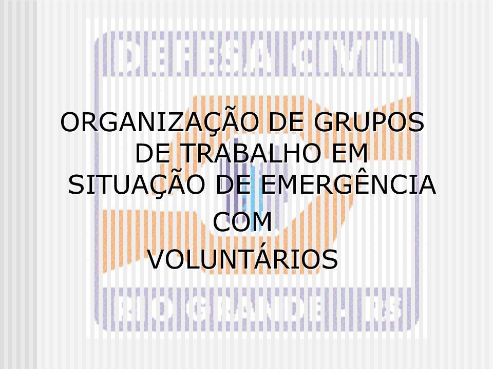 ORGANIZAÇÃO DE GRUPOS DE TRABALHO EM SITUAÇÃO DE EMERGÊNCIA COMVOLUNTÁRIOS
