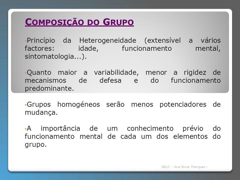 Princípio da Heterogeneidade (extensível a vários factores: idade, funcionamento mental, sintomatologia...).