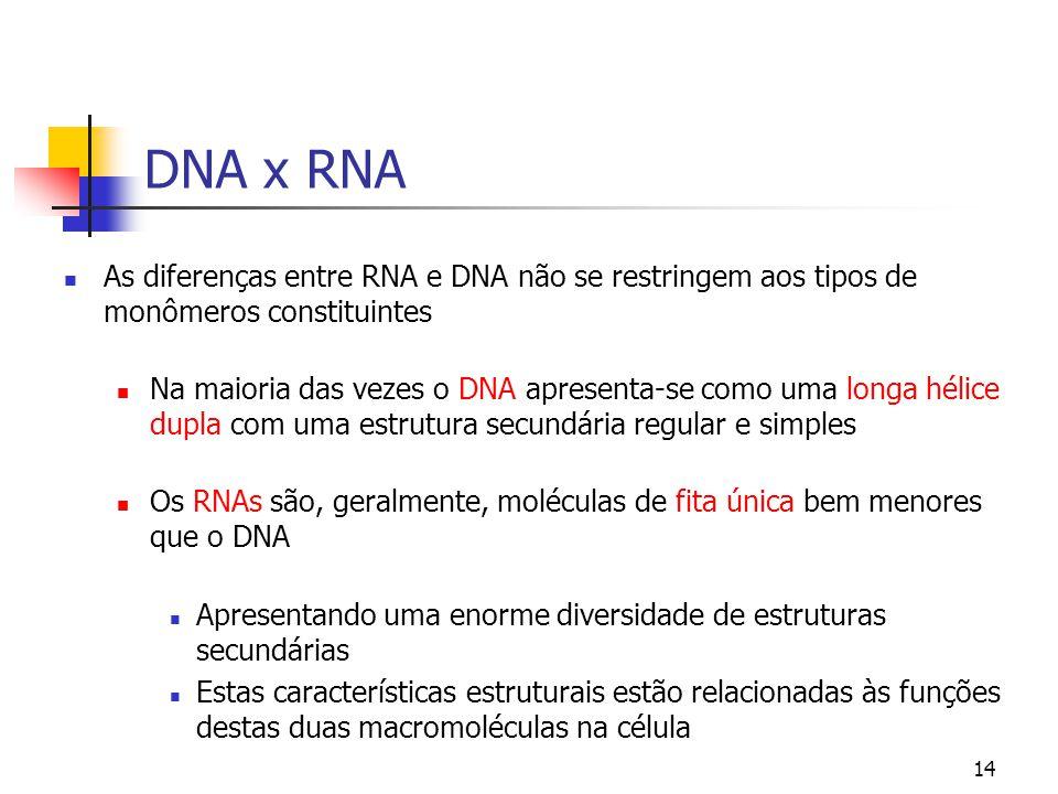 14 DNA x RNA As diferenças entre RNA e DNA não se restringem aos tipos de monômeros constituintes Na maioria das vezes o DNA apresenta-se como uma lon