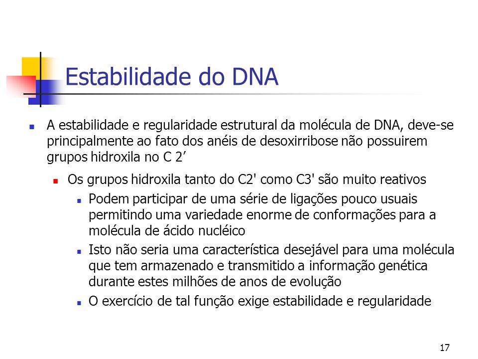 17 Estabilidade do DNA A estabilidade e regularidade estrutural da molécula de DNA, deve-se principalmente ao fato dos anéis de desoxirribose não poss