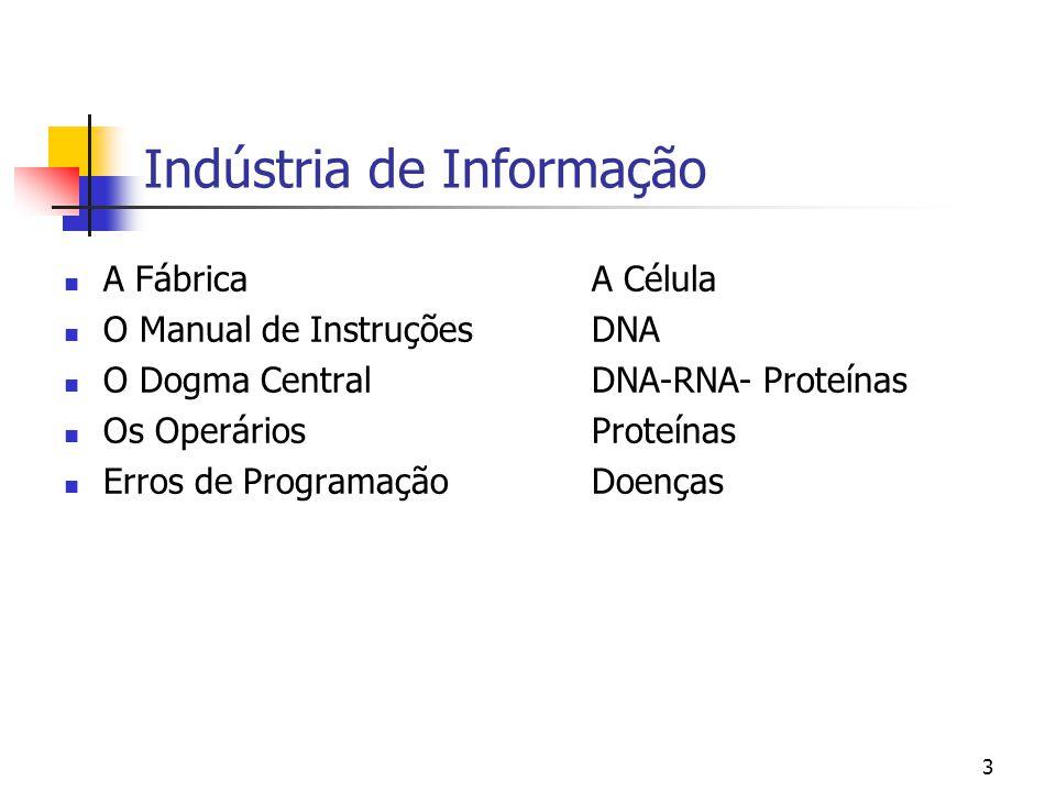 3 Indústria de Informação A Fábrica A Célula O Manual de InstruçõesDNA O Dogma CentralDNA-RNA- Proteínas Os OperáriosProteínas Erros de ProgramaçãoDoe