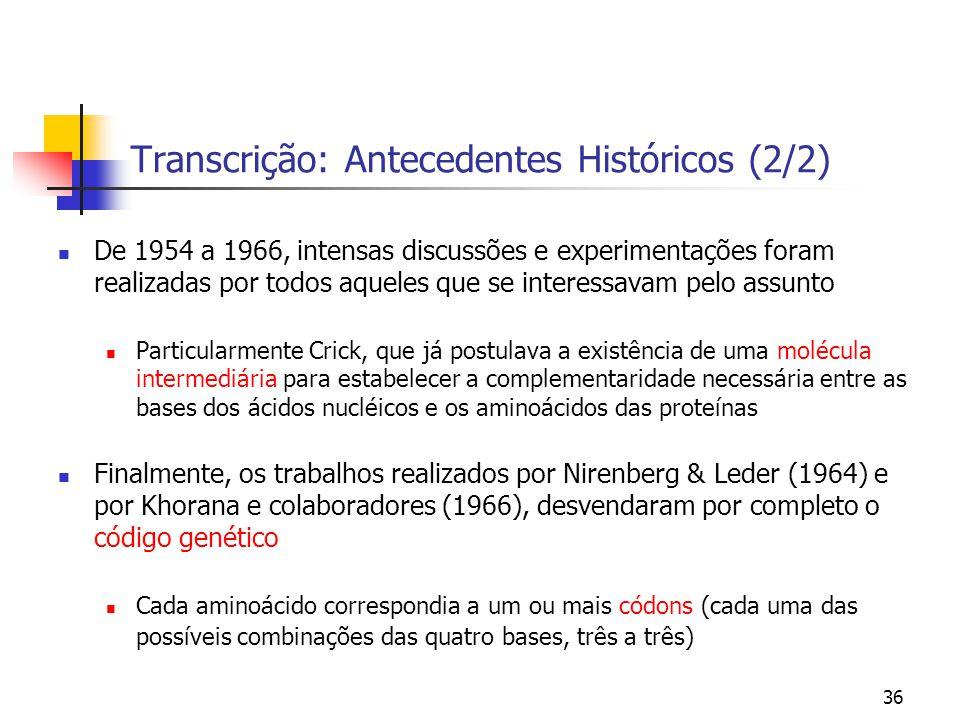 36 Transcrição: Antecedentes Históricos (2/2) De 1954 a 1966, intensas discussões e experimentações foram realizadas por todos aqueles que se interess