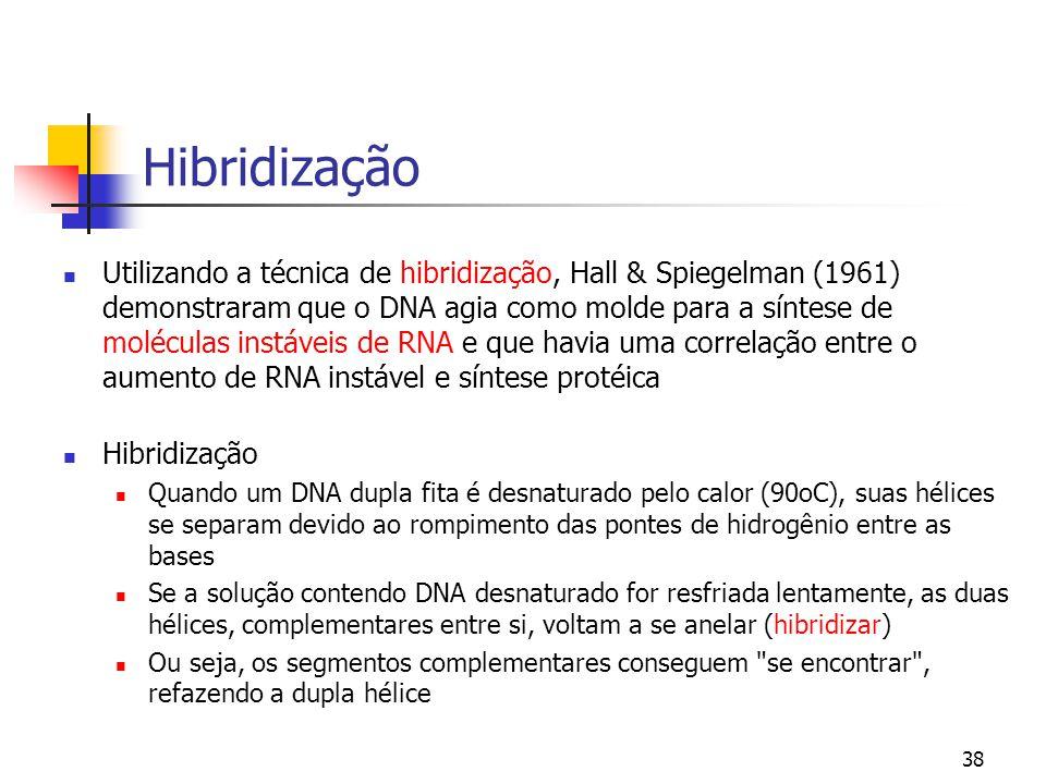 38 Hibridização Utilizando a técnica de hibridização, Hall & Spiegelman (1961) demonstraram que o DNA agia como molde para a síntese de moléculas inst