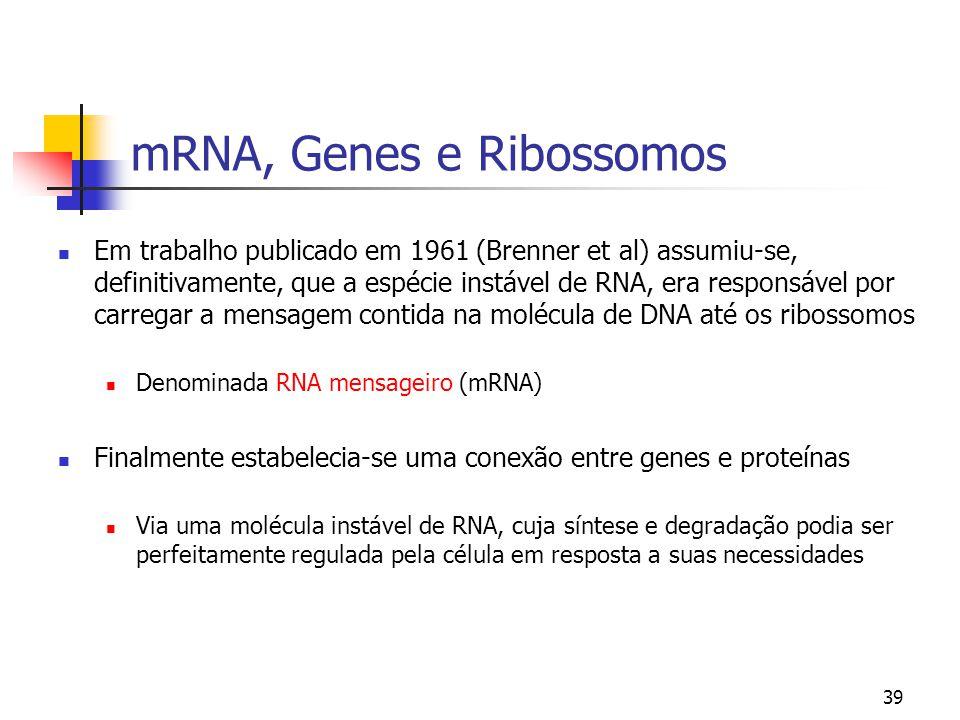 39 mRNA, Genes e Ribossomos Em trabalho publicado em 1961 (Brenner et al) assumiu-se, definitivamente, que a espécie instável de RNA, era responsável