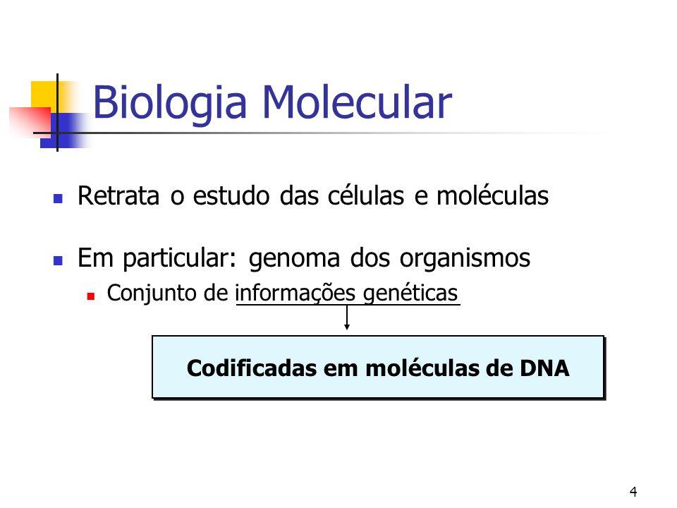 4 Biologia Molecular Retrata o estudo das células e moléculas Em particular: genoma dos organismos Conjunto de informações genéticas Codificadas em mo