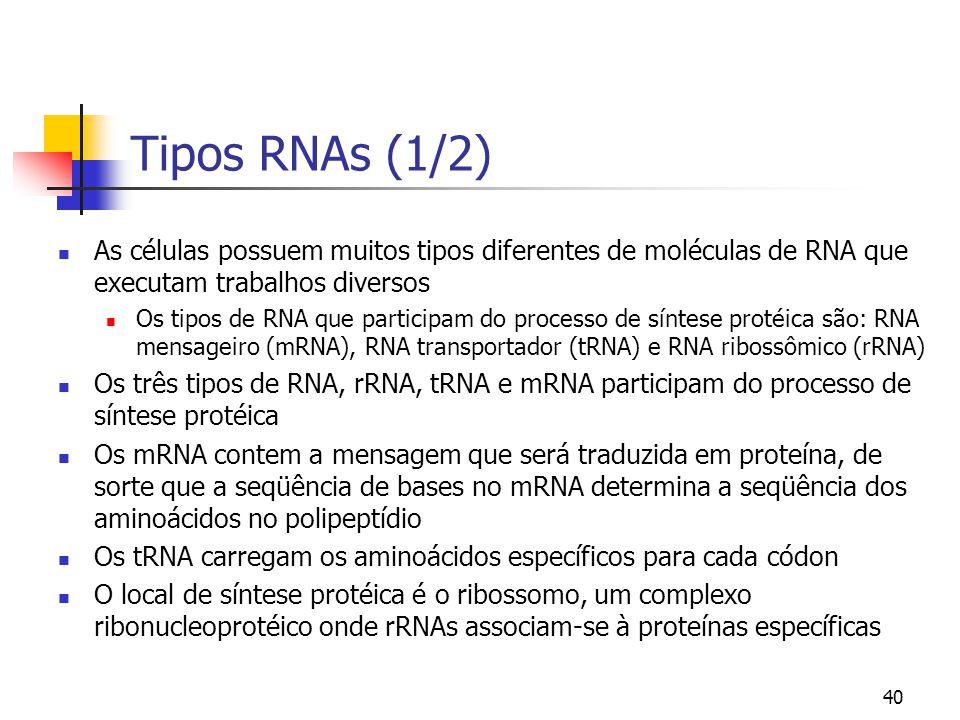 40 Tipos RNAs (1/2) As células possuem muitos tipos diferentes de moléculas de RNA que executam trabalhos diversos Os tipos de RNA que participam do p