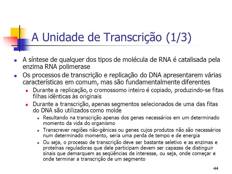 44 A Unidade de Transcrição (1/3) A síntese de qualquer dos tipos de molécula de RNA é catalisada pela enzima RNA polimerase Os processos de transcriç