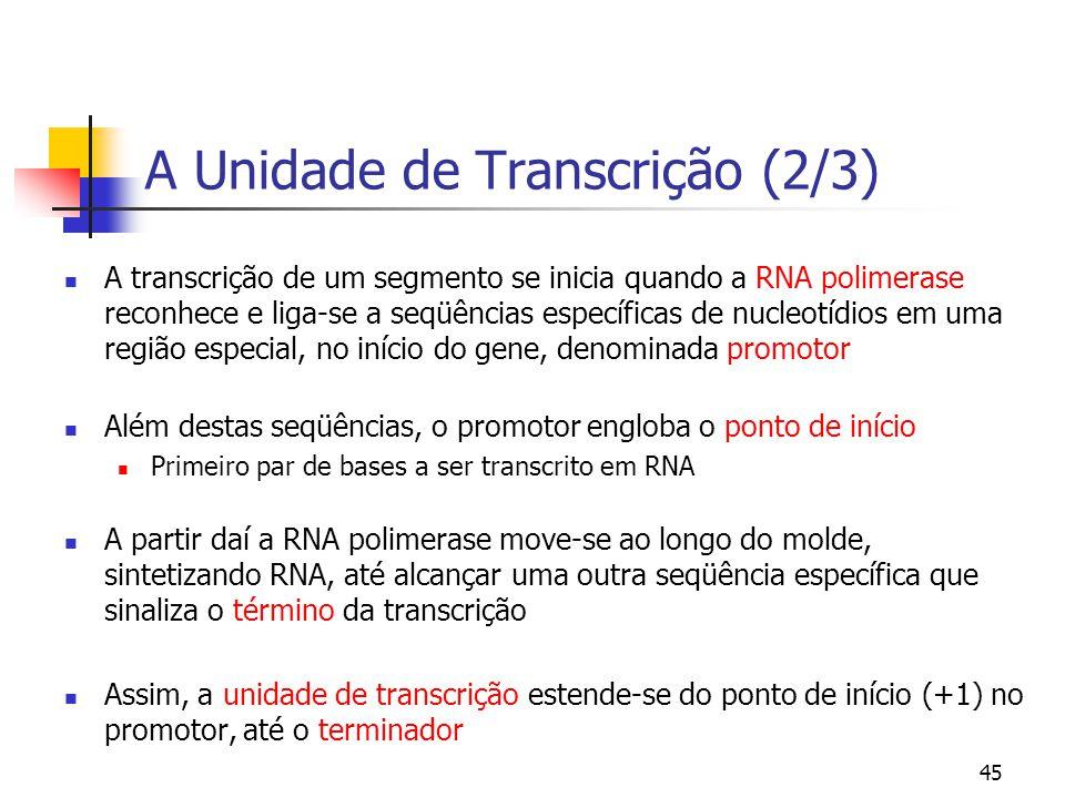 45 A Unidade de Transcrição (2/3) A transcrição de um segmento se inicia quando a RNA polimerase reconhece e liga-se a seqüências específicas de nucle