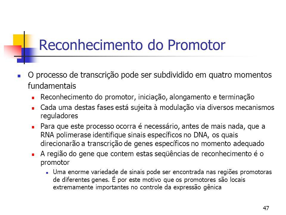 47 Reconhecimento do Promotor O processo de transcrição pode ser subdividido em quatro momentos fundamentais Reconhecimento do promotor, iniciação, al