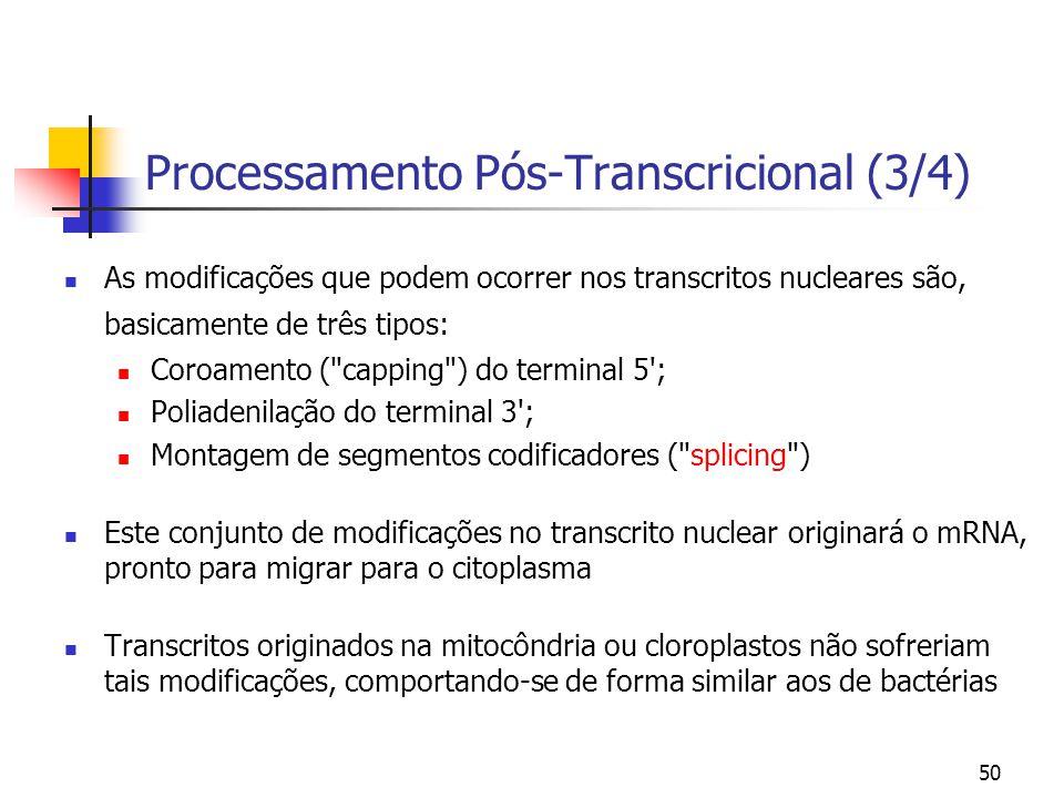 50 Processamento Pós-Transcricional (3/4) As modificações que podem ocorrer nos transcritos nucleares são, basicamente de três tipos: Coroamento (