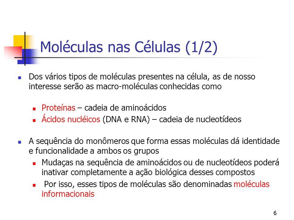 6 Moléculas nas Células (1/2) Dos vários tipos de moléculas presentes na célula, as de nosso interesse serão as macro-moléculas conhecidas como Proteí