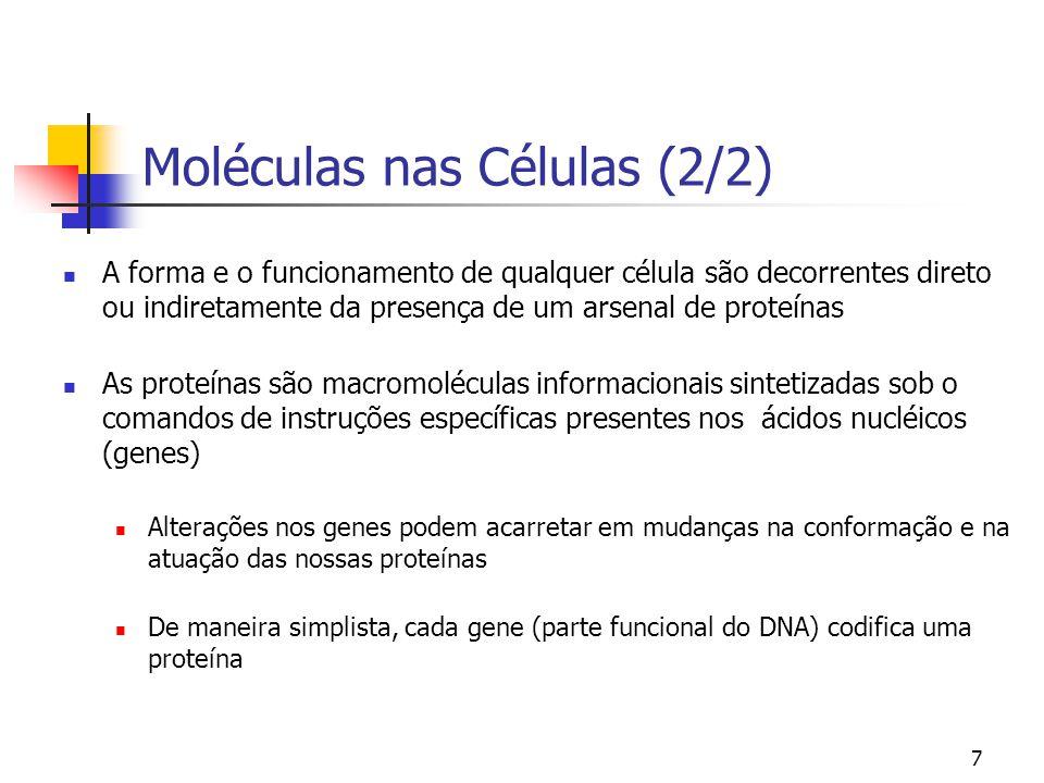 7 Moléculas nas Células (2/2) A forma e o funcionamento de qualquer célula são decorrentes direto ou indiretamente da presença de um arsenal de proteí