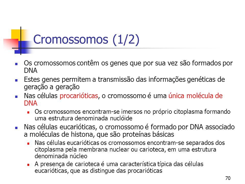70 Cromossomos (1/2) Os cromossomos contêm os genes que por sua vez são formados por DNA Estes genes permitem a transmissão das informações genéticas