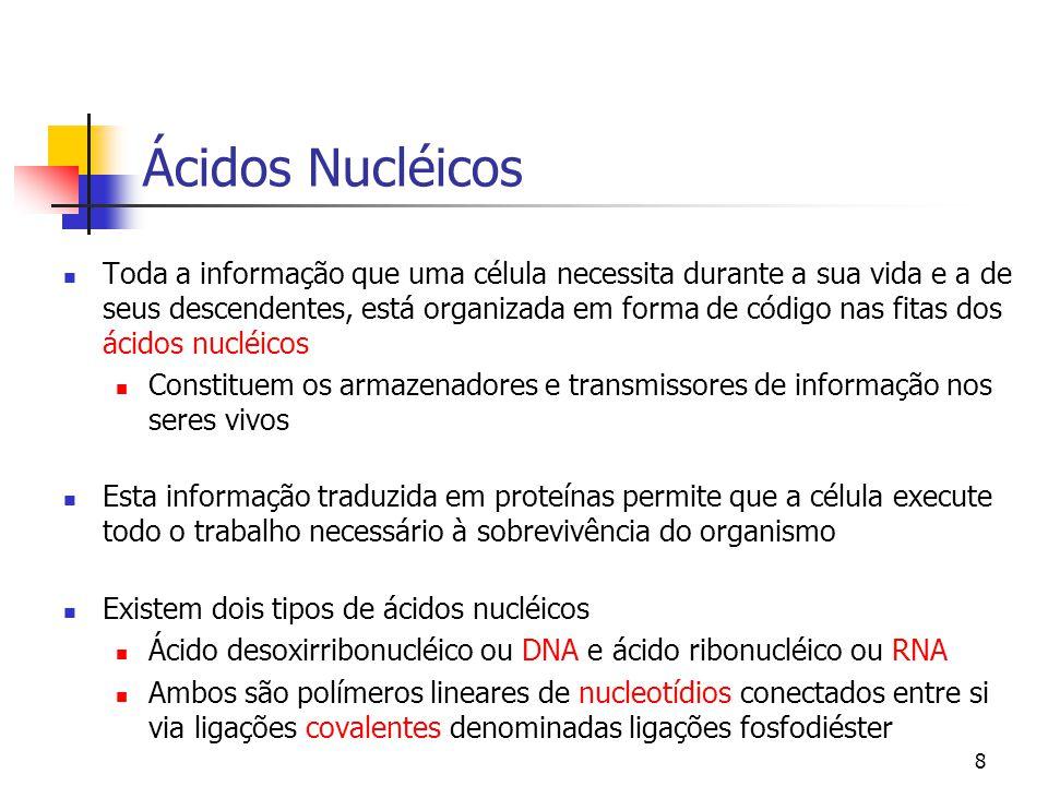 8 Ácidos Nucléicos Toda a informação que uma célula necessita durante a sua vida e a de seus descendentes, está organizada em forma de código nas fita