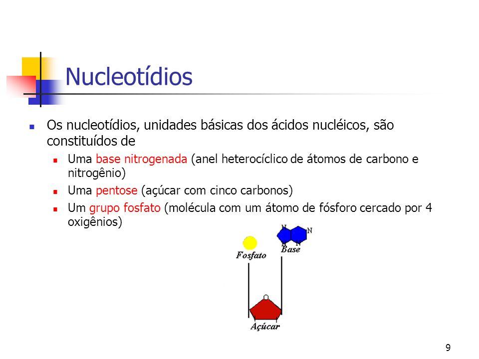 9 Nucleotídios Os nucleotídios, unidades básicas dos ácidos nucléicos, são constituídos de Uma base nitrogenada (anel heterocíclico de átomos de carbo