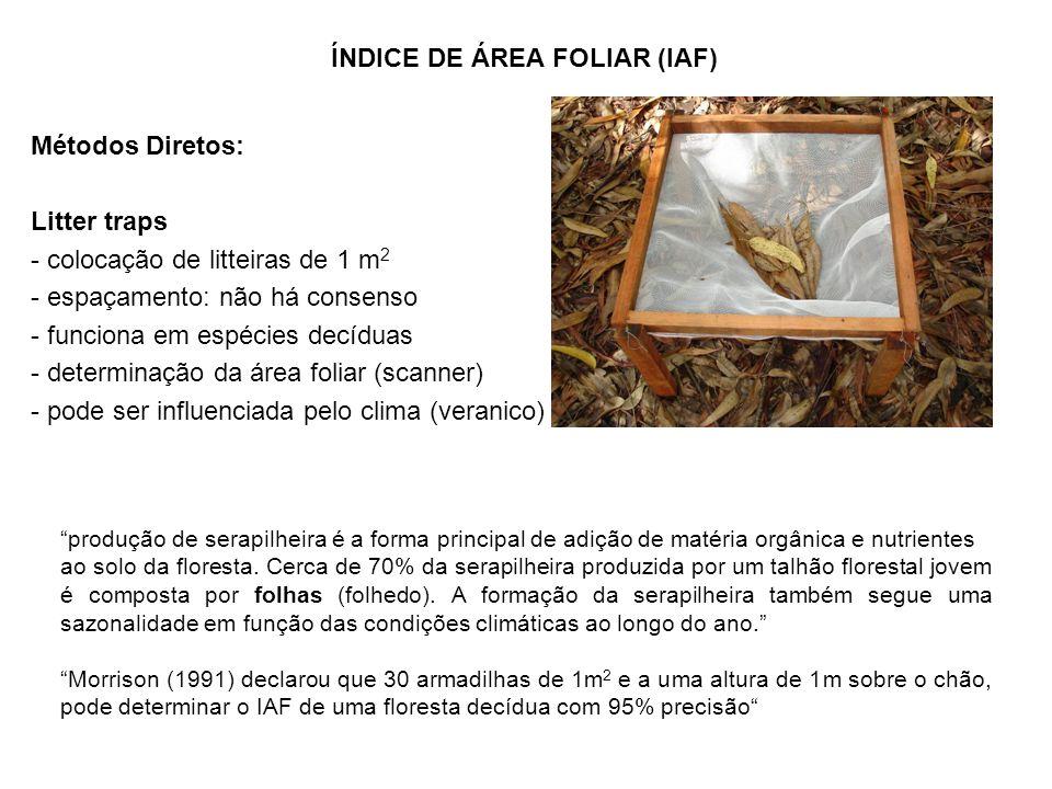 Métodos Diretos: Litter traps - colocação de litteiras de 1 m 2 - espaçamento: não há consenso - funciona em espécies decíduas - determinação da área foliar (scanner) - pode ser influenciada pelo clima (veranico) ÍNDICE DE ÁREA FOLIAR (IAF) produção de serapilheira é a forma principal de adição de matéria orgânica e nutrientes ao solo da floresta.
