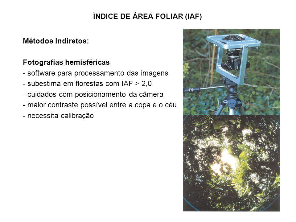 Métodos Indiretos: Fotografias hemisféricas - software para processamento das imagens - subestima em florestas com IAF > 2,0 - cuidados com posicionamento da câmera - maior contraste possível entre a copa e o céu - necessita calibração ÍNDICE DE ÁREA FOLIAR (IAF)