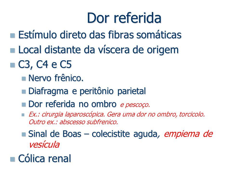 Dor referida Estímulo direto das fibras somáticas Estímulo direto das fibras somáticas Local distante da víscera de origem Local distante da víscera d