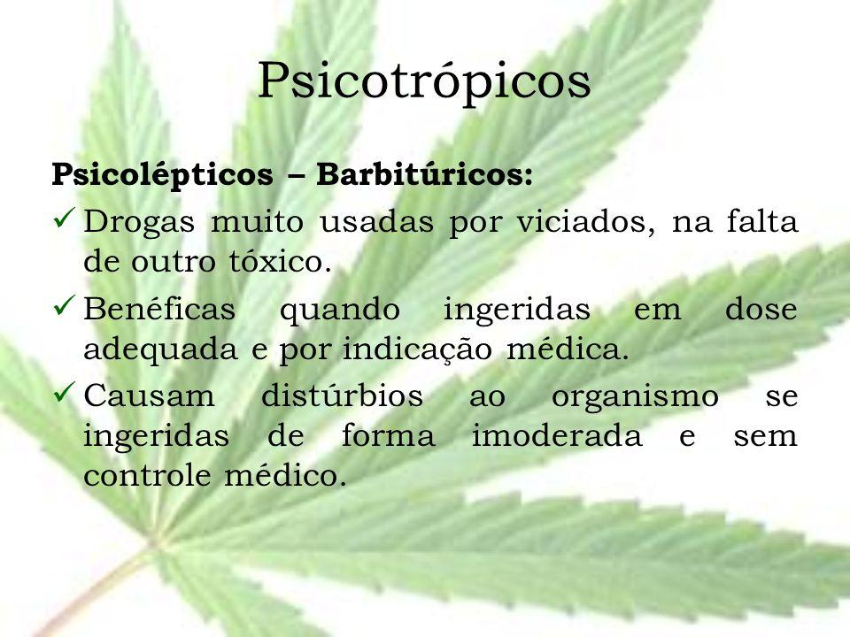 Psicotrópicos Psicolépticos – Barbitúricos: Drogas muito usadas por viciados, na falta de outro tóxico. Benéficas quando ingeridas em dose adequada e