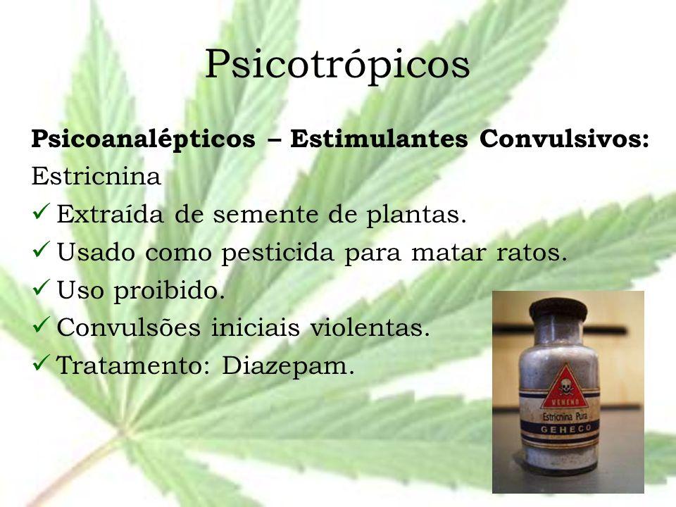 Psicotrópicos Psicoanalépticos – Estimulantes Convulsivos: Estricnina Extraída de semente de plantas. Usado como pesticida para matar ratos. Uso proib