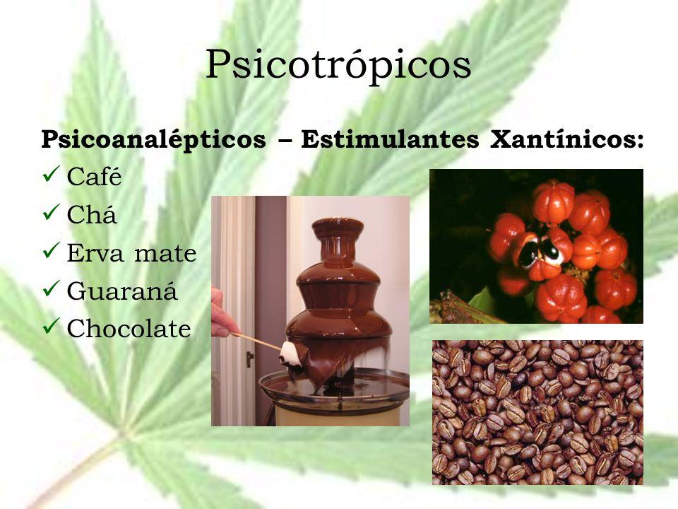 Psicotrópicos Psicoanalépticos – Estimulantes Xantínicos: Café Chá Erva mate Guaraná Chocolate