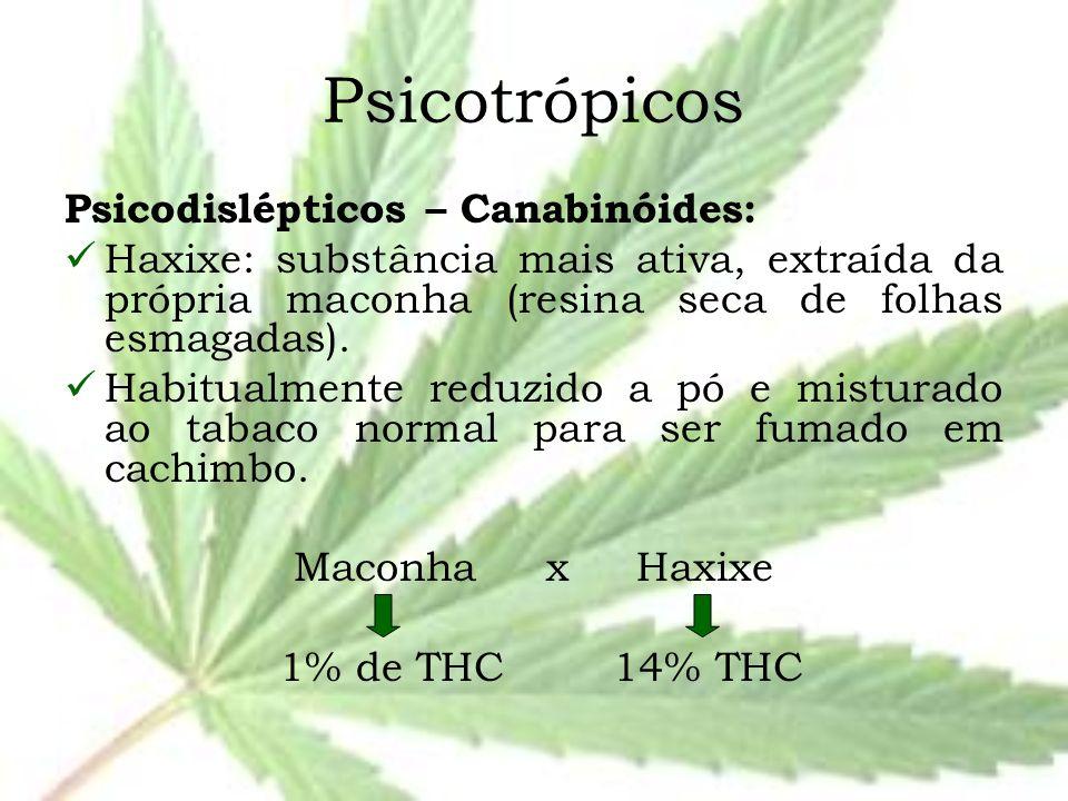 Psicotrópicos Psicodislépticos – Canabinóides: Haxixe: substância mais ativa, extraída da própria maconha (resina seca de folhas esmagadas). Habitualm