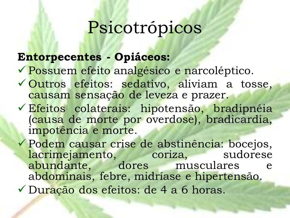 Psicotrópicos Entorpecentes - Opiáceos: Possuem efeito analgésico e narcoléptico. Outros efeitos: sedativo, aliviam a tosse, causam sensação de leveza