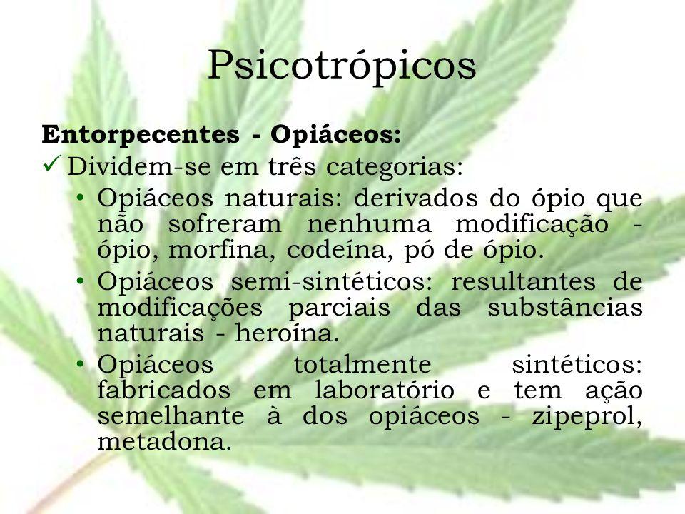 Psicotrópicos Entorpecentes - Opiáceos: Dividem-se em três categorias: Opiáceos naturais: derivados do ópio que não sofreram nenhuma modificação - ópi