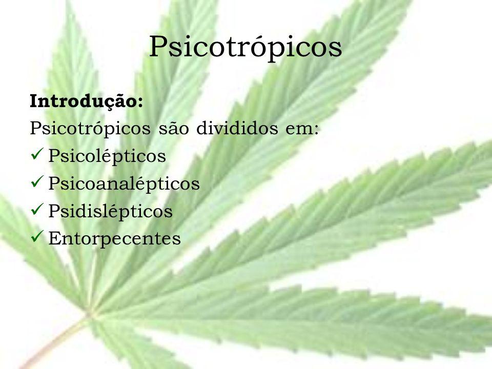 Psicotrópicos Introdução: Psicotrópicos são divididos em: Psicolépticos Psicoanalépticos Psidislépticos Entorpecentes