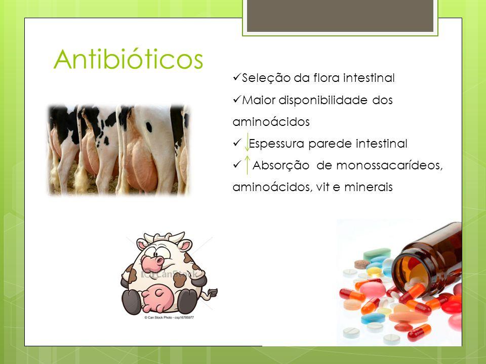 Antibióticos Seleção da flora intestinal Maior disponibilidade dos aminoácidos Espessura parede intestinal Absorção de monossacarídeos, aminoácidos, v