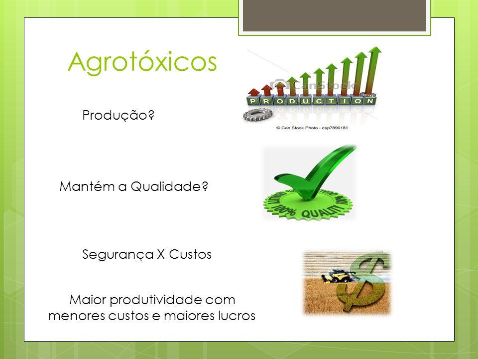 Agrotóxicos Produção? Mantém a Qualidade? Segurança X Custos Maior produtividade com menores custos e maiores lucros