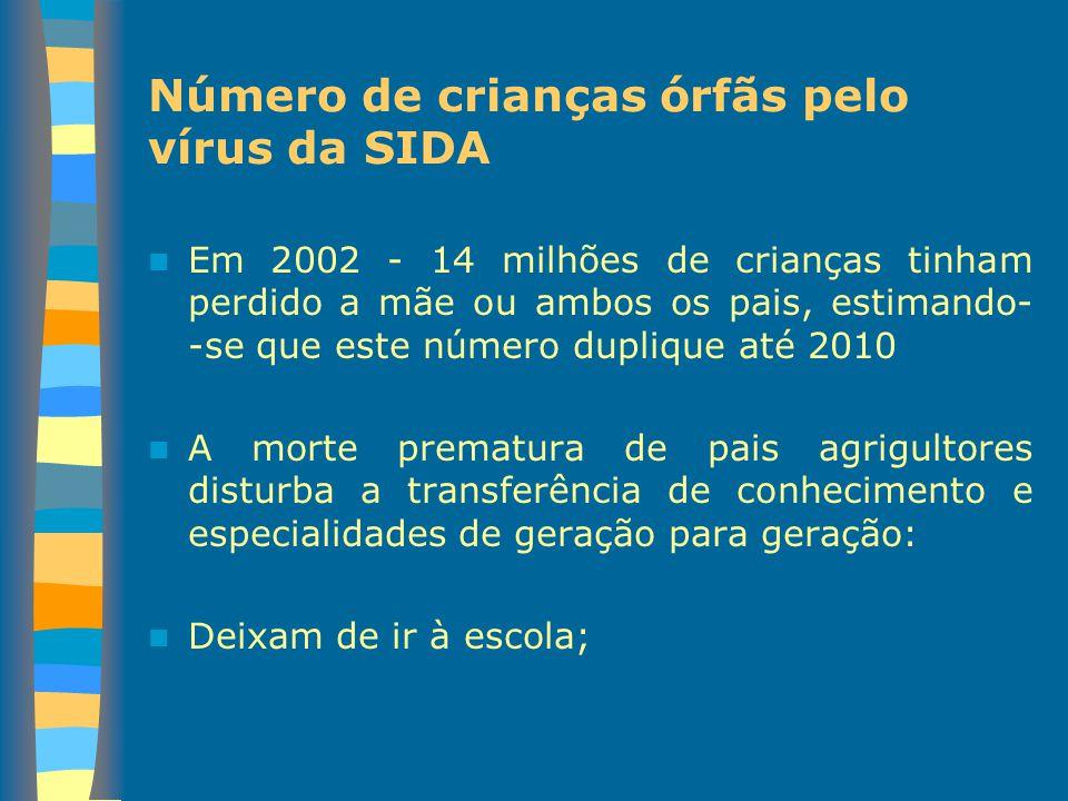 Número de crianças órfãs pelo vírus da SIDA Em 2002 - 14 milhões de crianças tinham perdido a mãe ou ambos os pais, estimando- -se que este número dup