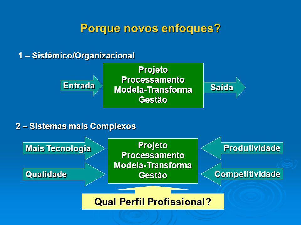 Porque novos enfoques? 1 – Sistêmico/Organizacional Projeto Processamento Modela-Transforma Gestão Entrada Saída 2 – Sistemas mais Complexos ProjetoPr