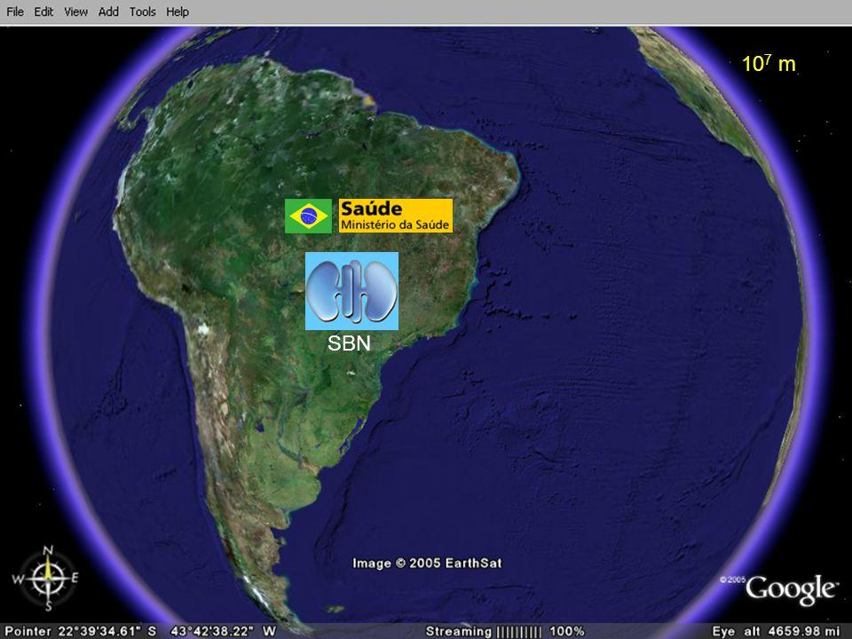 Donor Action 2008 Cronograma de implantação do Donor Action no Brasil (2) Fase II (2010) -Análise de resultados de 12 meses (RJ) -Implantação das medidas corretivas -Expansão do licenciamento para 50 centros -Criação de um comitê Donor Action nacional -Seleção dos DoAR nos estados de MG, ES, PE -Aplicação do DA Diagnostic Review -Análise dos dados nacionais e apresentação no Congresso Brasileiro de Nefrologia 2010 (Vitória)