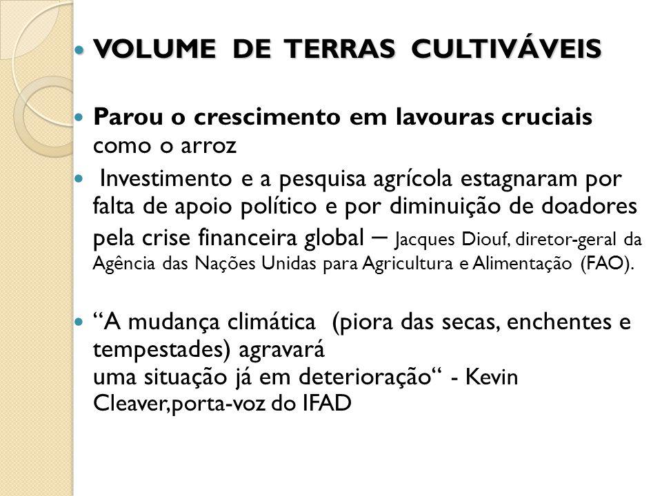 VOLUME DE TERRAS CULTIVÁVEIS VOLUME DE TERRAS CULTIVÁVEIS Parou o crescimento em lavouras cruciais como o arroz Investimento e a pesquisa agrícola est