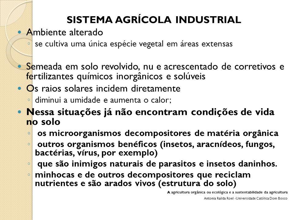 SISTEMA AGRÍCOLA INDUSTRIAL Ambiente alterado ◦ se cultiva uma única espécie vegetal em áreas extensas Semeada em solo revolvido, nu e acrescentado de