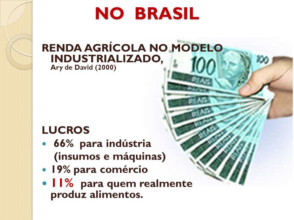 NO BRASIL RENDA AGRÍCOLA NO MODELO INDUSTRIALIZADO, Ary de David (2000) LUCROS 66% para indústria (insumos e máquinas) 19% para comércio 11% para quem