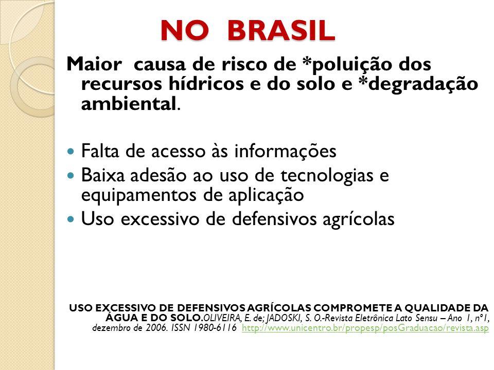 NO BRASIL Maior causa de risco de *poluição dos recursos hídricos e do solo e *degradação ambiental. Falta de acesso às informações Baixa adesão ao us