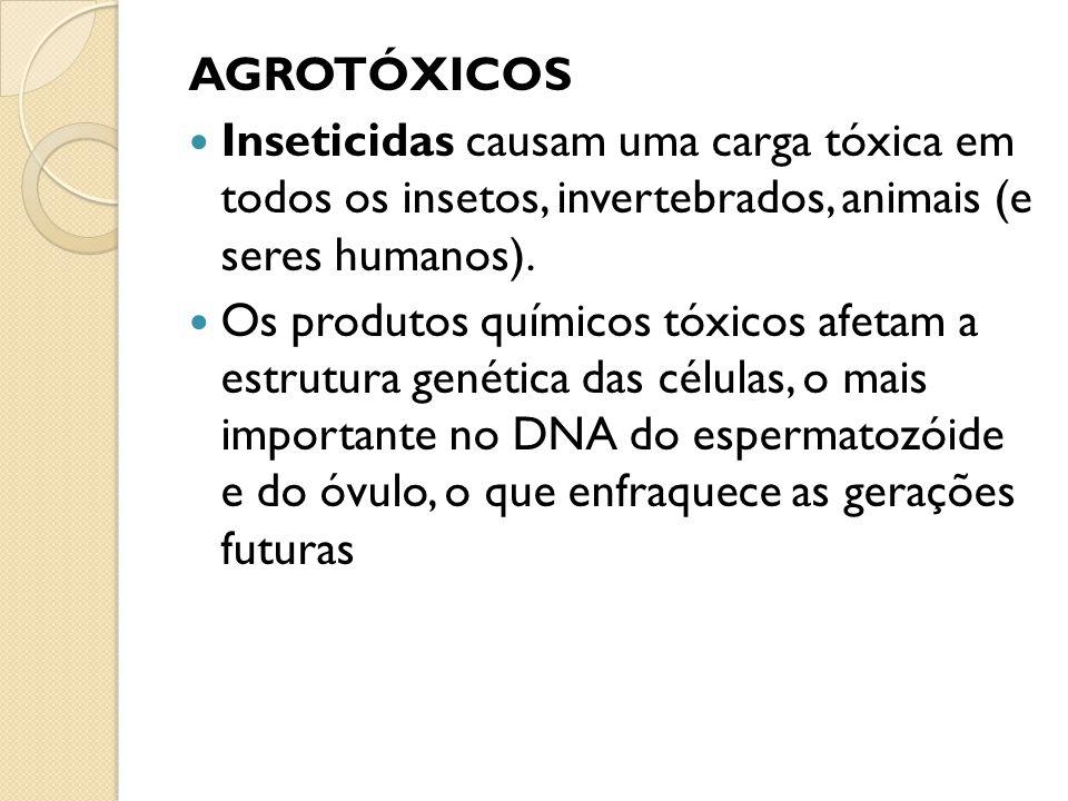 Inseticidas causam uma carga tóxica em todos os insetos, invertebrados, animais (e seres humanos). Os produtos químicos tóxicos afetam a estrutura gen