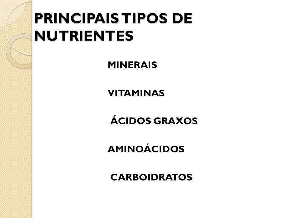 PRINCIPAIS TIPOS DE NUTRIENTES MINERAIS VITAMINAS ÁCIDOS GRAXOS AMINOÁCIDOS CARBOIDRATOS