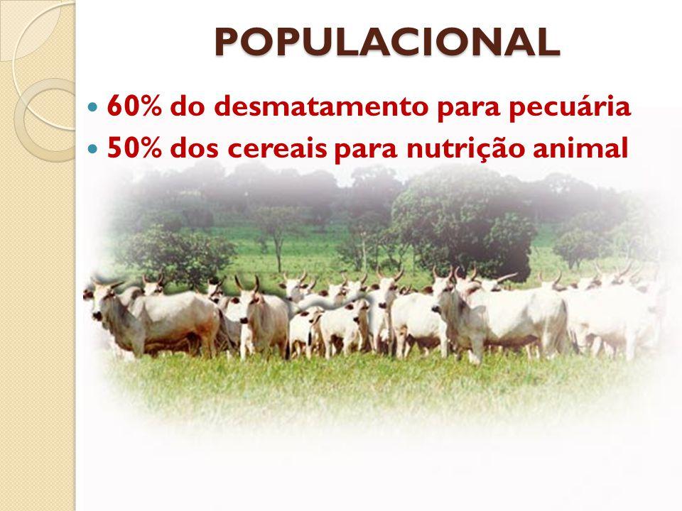 PRINCIPAIS TIPOS DE NUTRIENTES MINERAIS VITAMINAS ACIDOS GRAXOS AMINOACIDOS CARBOiDRATOS