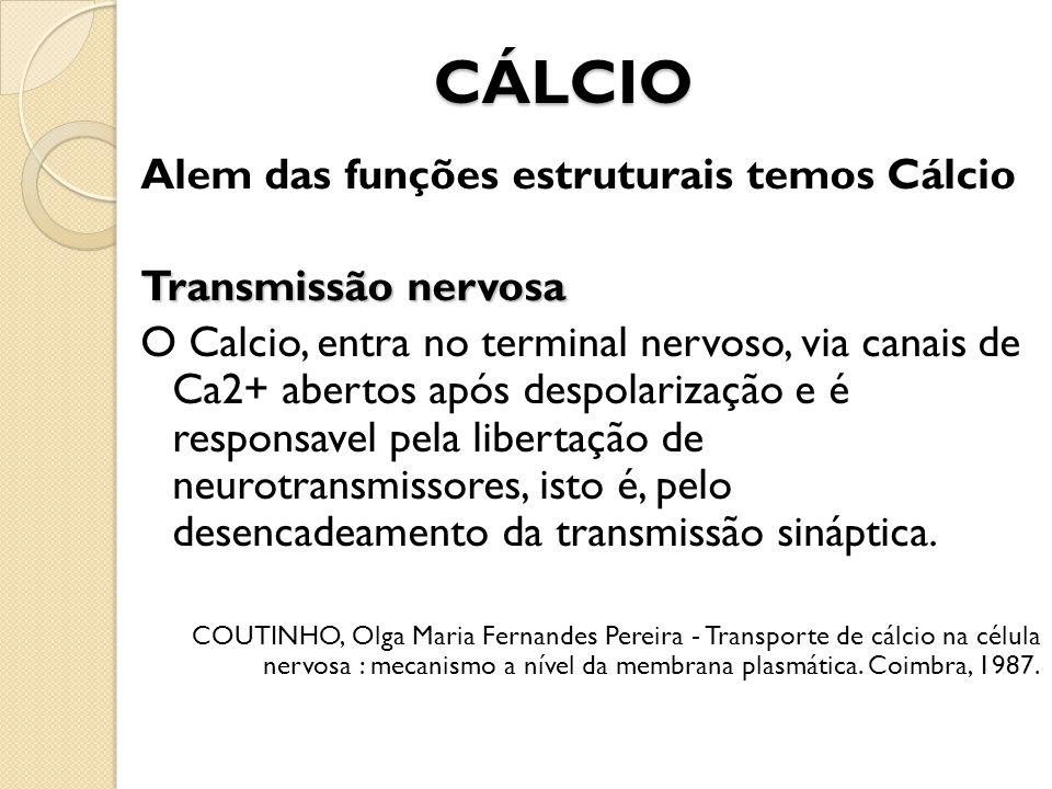 CÁLCIO Alem das funções estruturais temos Cálcio Transmissão nervosa O Calcio, entra no terminal nervoso, via canais de Ca2+ abertos após despolarizaç