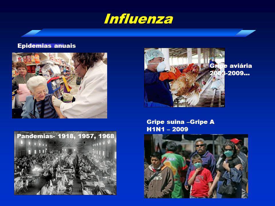 Pandemia H1N1 2009 -24 Fev – paciente 0, crianca 6 meses norte Mexico -2 Abril -morte 3 crianças Granja Caroll – Perote – fazenda americana México -16 de Abril – novos casos, pneumonia, óbitos México -casos Califórnia- 2 crianças - sem epidemiologia contato com suínos - -11/06 –OMS –declaração da Pandemia - -20/09 – OMS - > 3917 mortes, > 160 paises