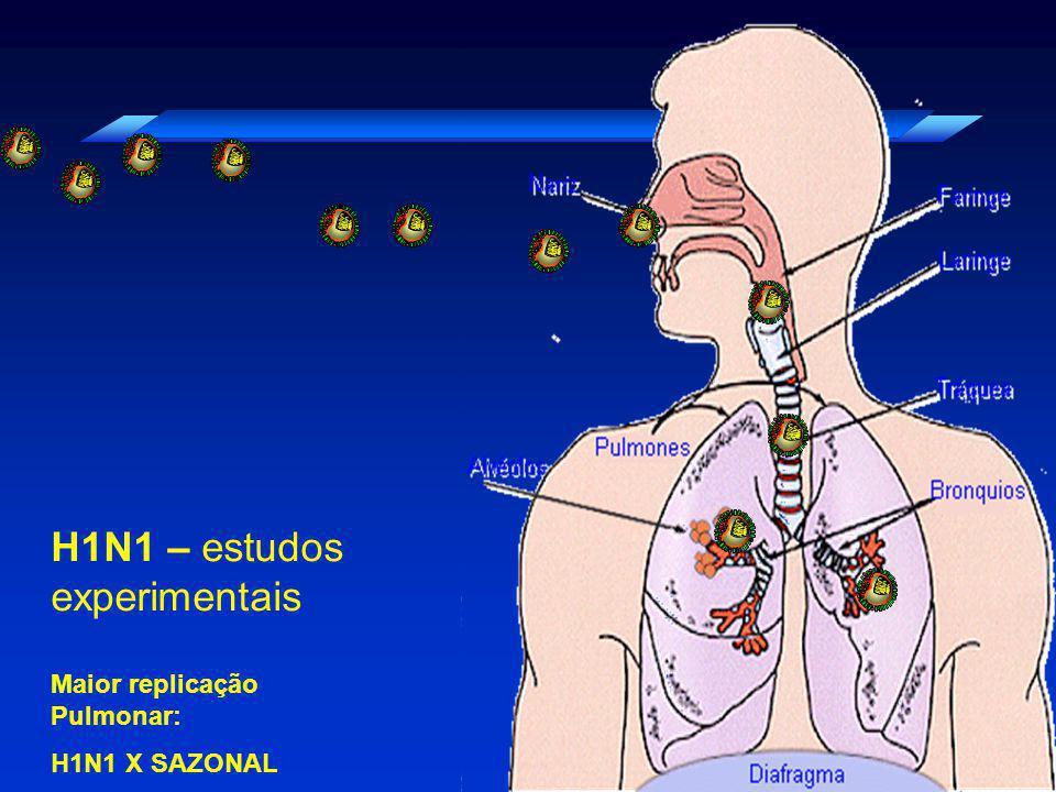 H1N1 – estudos experimentais Maior replicação Pulmonar: H1N1 X SAZONAL
