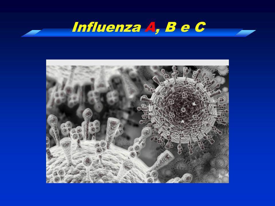 Abril a Setembro : Influenza, Rinovírus e … Bellei et al. Respirology, 2007